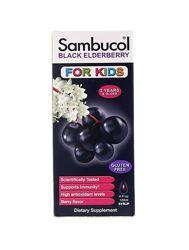 Sambucol, Черная бузина, Сироп для детей от 2х лет, 120 мл