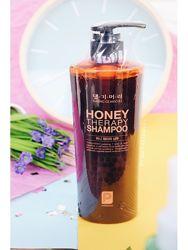 Шампунь Медовая терапия Daeng Gi Meo Ri Honey Therapy Shampoo 500 мл