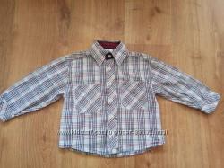 Рубашки H&M, Pilomino